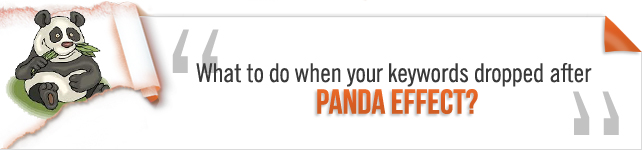 What to do when your keywords dropped after Panda Effect