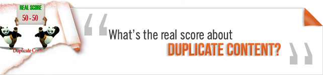 real score about duplicate content