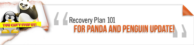 Recovery plan 101 for Panda and Penguin Update