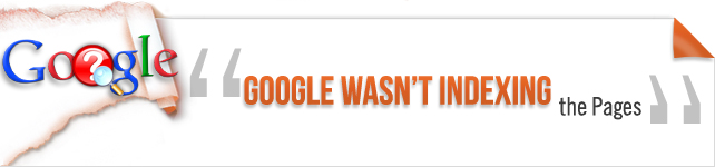 Google was not indexing the pages