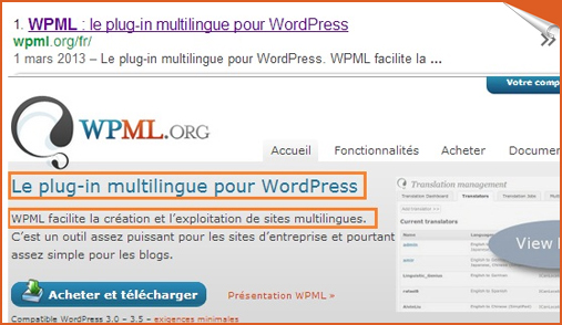google search with multilingual site